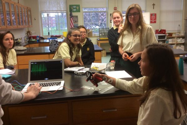 Seniors Delve into Neuroscience, Building Equipment and Conducting Experiments